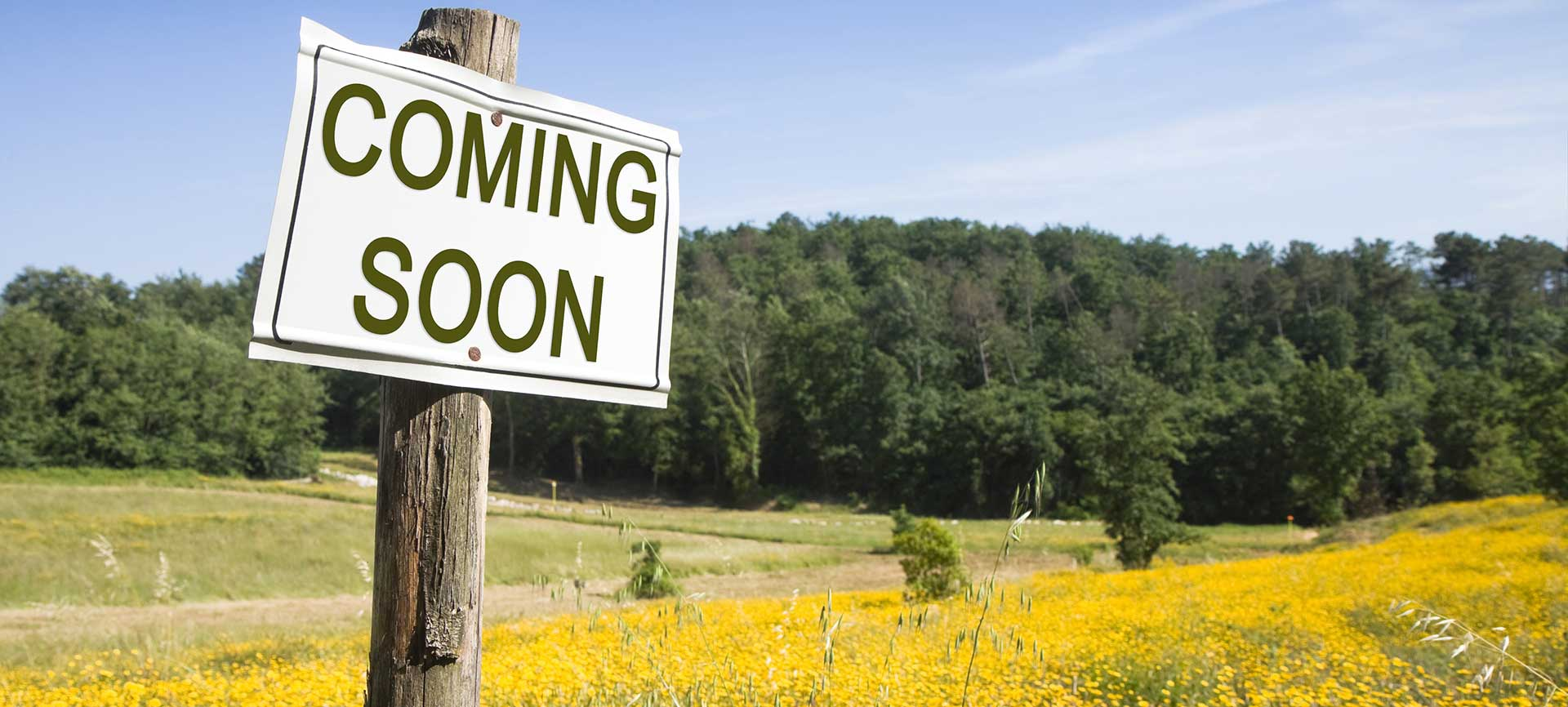 "Are Parts of Your Website Still ""Coming Soon""?"